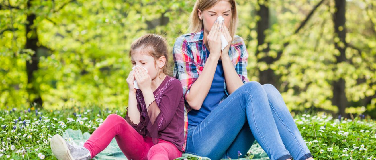 Saratoga Chiro-Allergies and Chiropractic Care