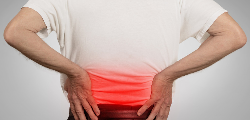 Saratoga Chiropractic-Evolution of Low Back Pain