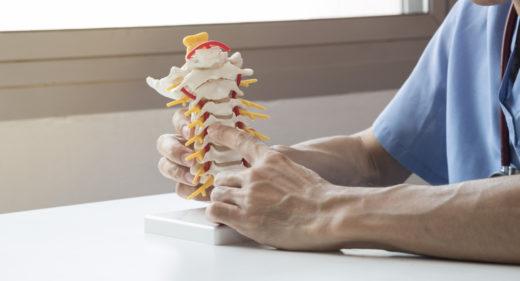Chiropractic Adjustments - Saratoga Springs Chiropractor, Saratoga Springs, NY