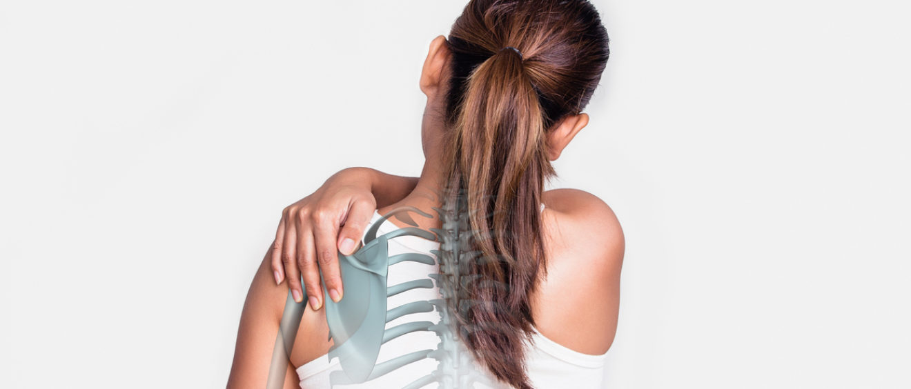 Chiropractic Care Evidence - Saratoga Springs Chiropractor, NY