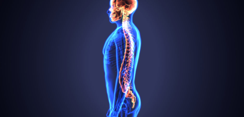 Spinal Pain - Saratoga Springs Chiropractor, Saratoga, NY